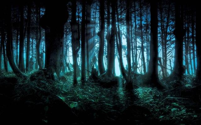 wallpaper-bosque-encantado