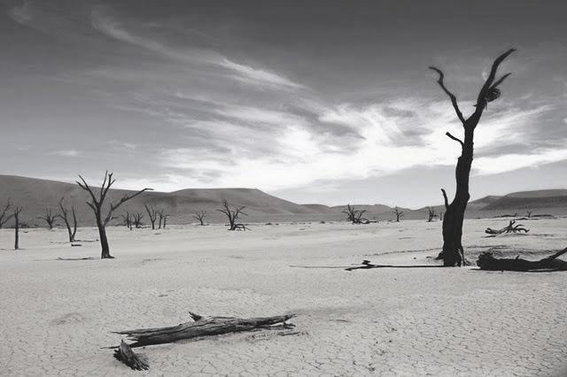 deadvlei-dead-vlei-trees-nabid-desert-dried-petrified-dessicated-1